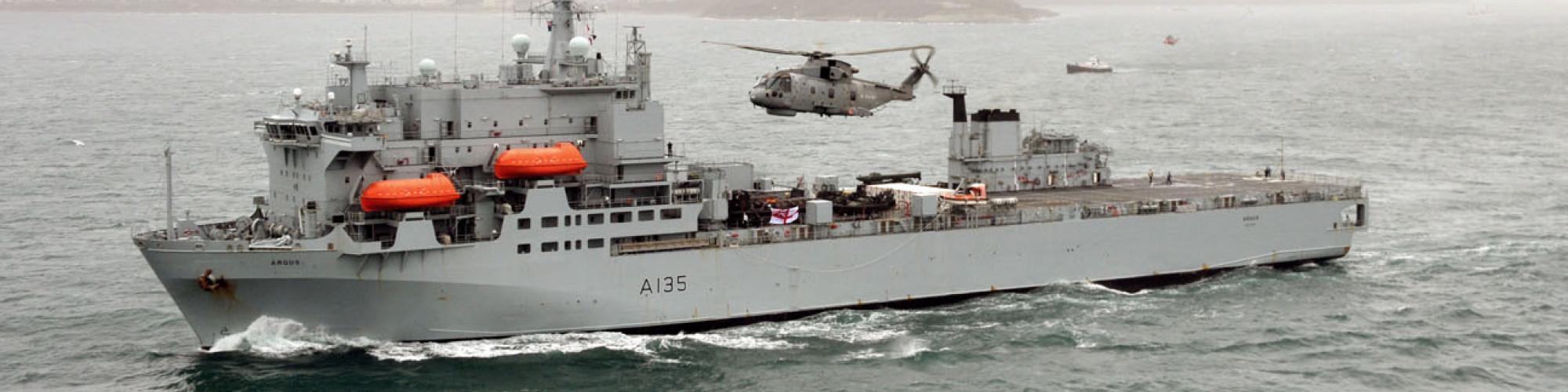 Royal Navy Medical Branch